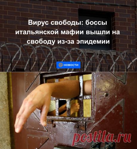 Вирус свободы: боссы итальянской мафии вышли на свободу из-за эпидемии - Новости Mail.ru