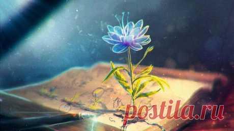 """""""Чтобы быть счастливым, необходимо говорить — не обвиняя, обещать — не забывая, отвечать — не споря, делать — не жалуясь.""""  © Мудрость Вселенной."""