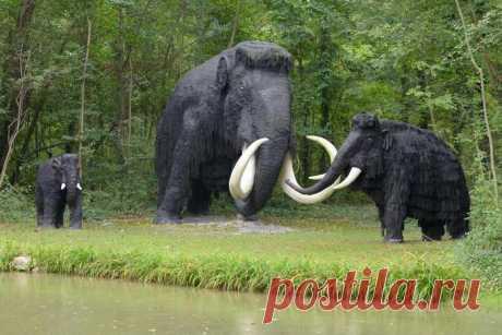Ya en 10 años de la genética prometen regenerar a los mamuts en la Tierra - zitata.org