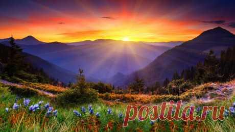 Вечер, в прощальном свете Солнца - 5 Ноября 2016 - Персональный сайт