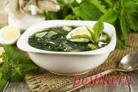 Блюда из крапивы: 20 витаминных рецептов