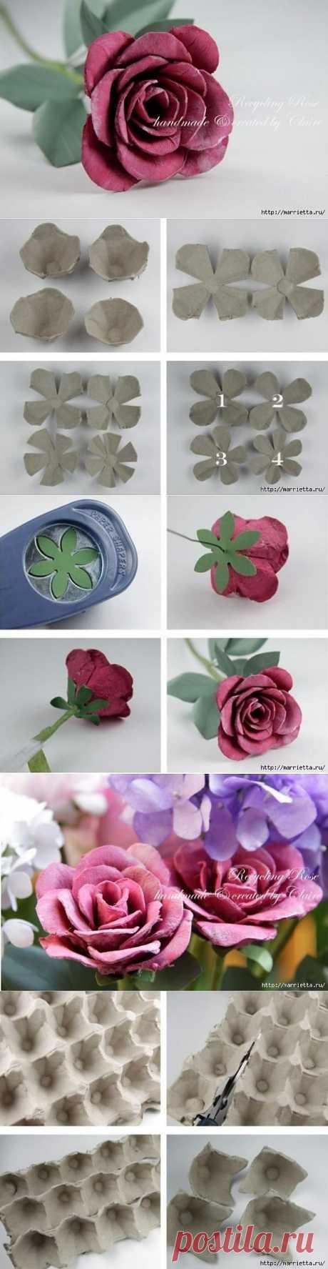Самые красивые розы из яичных лотков. Мастер-класс