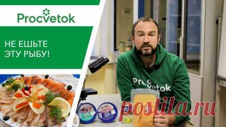 ОТРАВА НА НОВОГОДНЕМ СТОЛЕ. Какая рыба вредна для здоровья? ✿Приобретая растения в магазинах Procvetok вы помогаете развитию канала! ✔Беларусь: https://procvetok.by/ ✔Россия: https://procvetok.ru/ ✔Казахстан: https://...