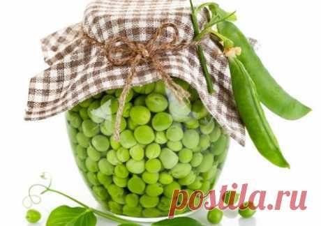 Горошек зеленый консервированный: рецепты в домашних условиях, сделать свежий дома, как делают молодой, фото, видео