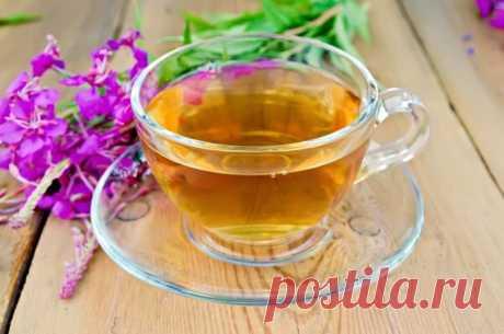 Иван-чай – эликсир здоровья и панацея от всех болезней