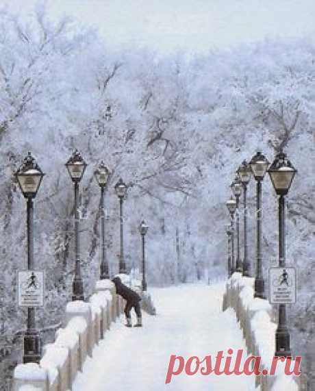 Winter Wonderland | Scenes from Winter