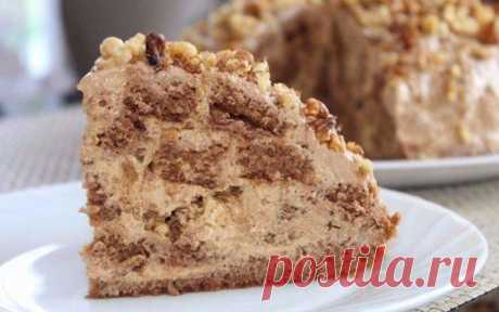 Торт «Несквик»: Нежная и очень вкусная выпечка