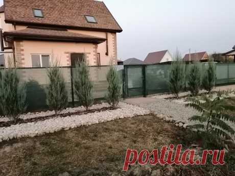 Как украсить свою придомовую без брусчатки. Травы не будет и гармонично с природой   Жизнь на юге России   Яндекс Дзен