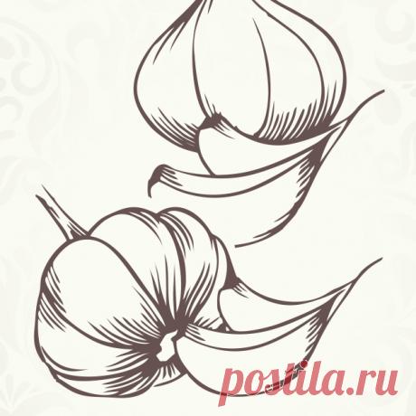Купить Чесночное масло по Лучшей Цене | Здоровое Питание Самые низкие цены на Чесночное масло | Отзывы | Доставка в любую точку Украины | Магазин Здорового Питания | +380 (68) 432-35-54 приём заказов