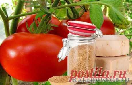 Органические удобрения для сада и огорода | Калейдоскоп