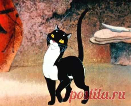 Почему кошка должна жить в доме: 5 причин   Про Кошек   Яндекс Дзен