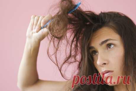 Неухоженные волосы: что именно вам мешает выглядеть роскошно? . Милая Я