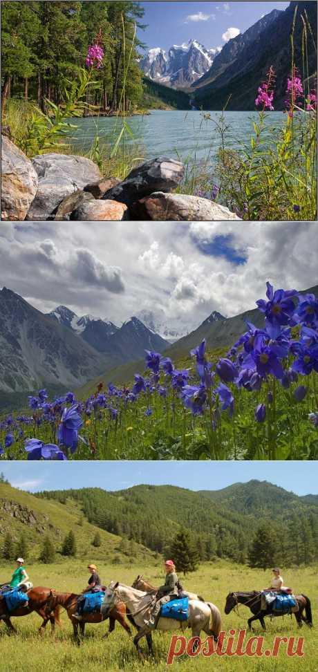 Алтай - мировая сокровищница.