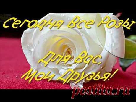 Розы! Моим Друзьям!Розы для Друзей! Роза - Царица цветов! Розу любили, воспевали и даже преклонялись с незапамятных времен. О ней поют Поэты всех веков. Нет в мире ничего нежней и краше,  Чем этот сверток алых лепестков, Раскрывшийся благоуханной чашей. Заказать видео и видео заставку можно здесь: https://goo.gl/BWpCz   Примеры видео: https://www.youtube.com/playlist?list=PL_4A4gTsdWxAhOceDqJovX5uKrobzM3c4
