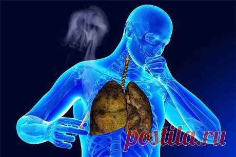 Восстановление организма после курения | На всякий случай