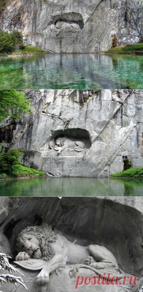 Лучшие фотографии со всего света - Умирающий лев