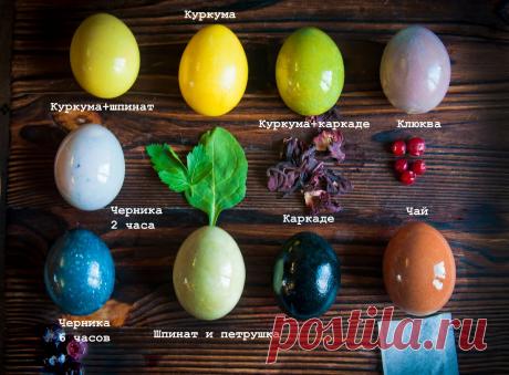 Узнала как бабушка красила яйца на Пасху, когда не было луковой шелухи. Показываю, что получилось у меня   Живые вещи   Яндекс Дзен