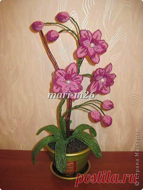 Орхидея из бисера. Фото мастер-класс.