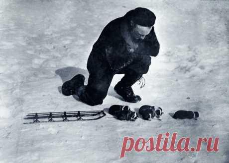 25 октября 1888 года родился Ричард Берд – полярный исследователь, совершивший первый в истории полет над Южным полюсом. Эта фотография была сделана во время его экспедиции в Антарктику.