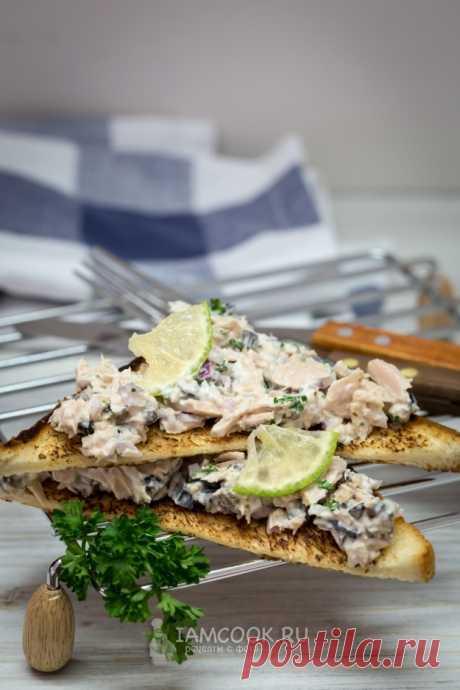 Бутерброды с тунцом и оливками — рецепт с фото пошагово. Приготовьте смесь для бутерброда заранее, а утром наслаждайтесь вкусным завтраком.