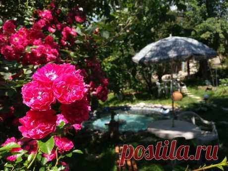 lonelyplanet.com: Дом для отпуска Moonlight Sonata , Дилижан, Армения . Забронируйте отель прямо сейчас!