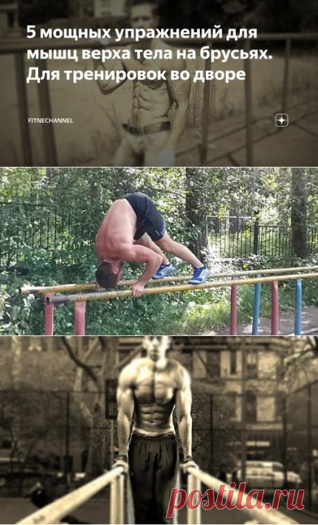 5 мощных упражнений для мышц верха тела на брусьях. Для тренировок во дворе | fitnechannel | Яндекс Дзен