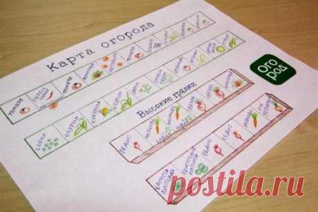 20 обязательных пунктов, которые должен выполнять каждый огородник - Садоводка
