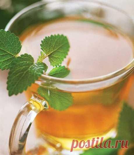 Чай на травах рецепт – русская кухня: напитки. «Еда»