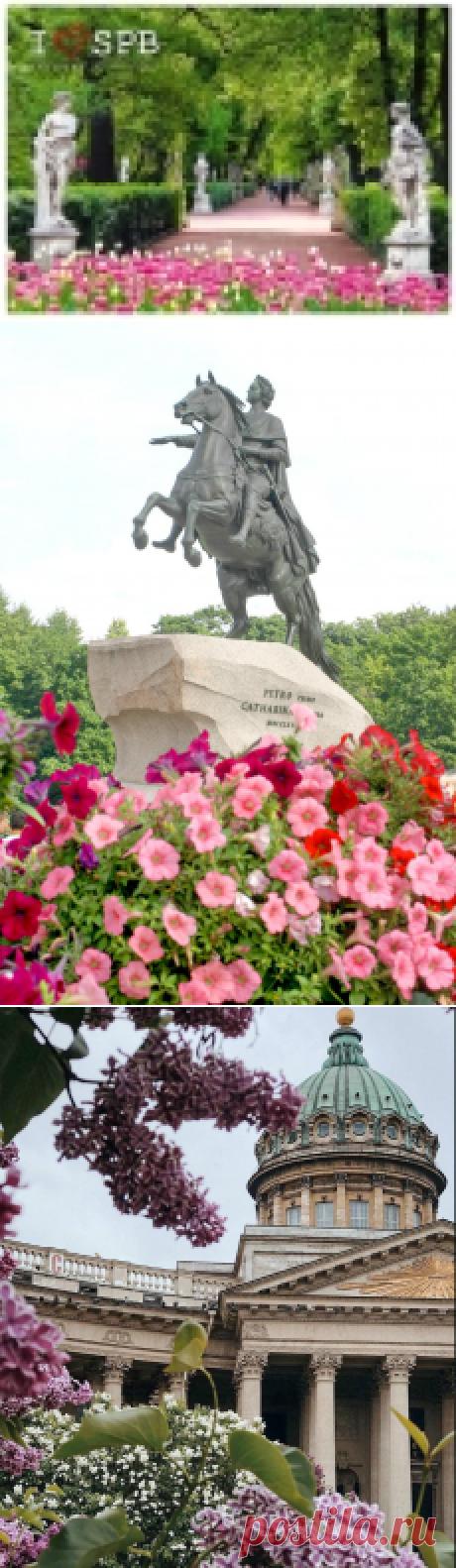 Санкт-Петербург в цвету ~ Плэйкасты ~ Beesona.Ru
