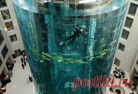 Германия. Берлин.  AquaDom – этот 25-метровый аквариум  расположен в отеле Radisson SAS Hotel.  А внутрь этого аквариума архитектор расположил лифт.