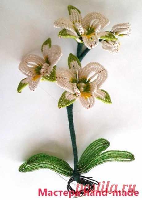 Орхидея из бисера - мастер-класс (схема плетения) Мастера hand-made
