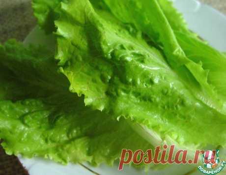 Как сохранить свежесть салатных листьев
