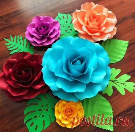 Отличные цветы для фотосессий и праздничного декора
