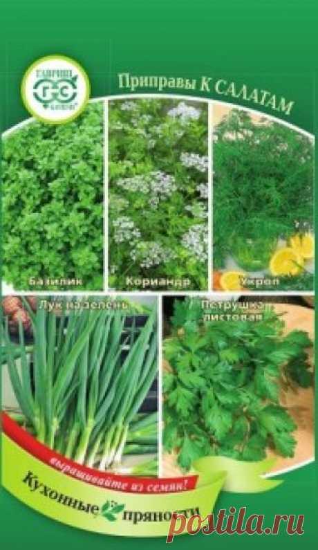 Семена. Кухонные пряности к овощам и салатам (вес: 3,7 г) Всхожесть: 76%. Пряные растения, вошедшие в состав смеси придают салатам неповторимый вкус, их легко и удобно выращивать на даче, они всегда под рукой, свежие — летом или засушенные на зиму. Пряный базилик хорошо сочетается с помидорами, зелеными овощами, яйцами, рыбой и сыром. Чтобы...