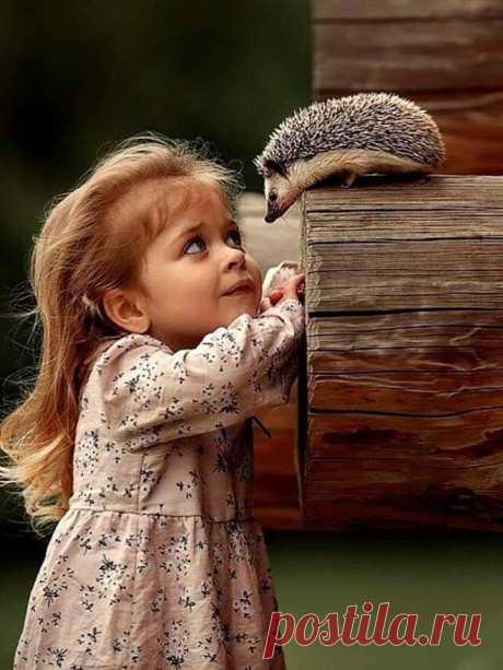Наша самая большая сила заключается в доброте и нежности нашего сердца… ________________