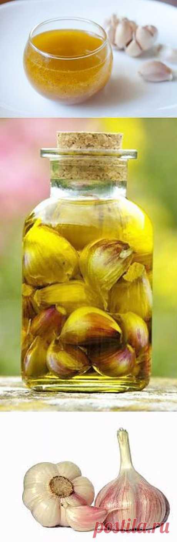 Как изготовить чесночное масло и его полезные свойства | ПолонСил.ру - социальная сеть здоровья