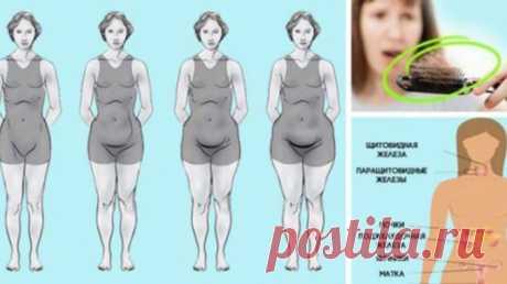 Эта женщина эндокринолог из США. И она расскажет почему тебе не удается сбросить лишний вес! — Полезные советы