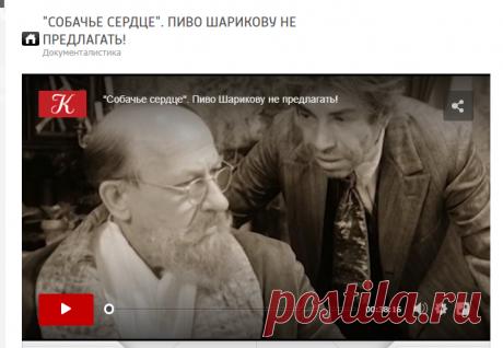 """""""Собачье сердце"""". Пиво Шарикову не предлагать! / tvkultura.ru"""