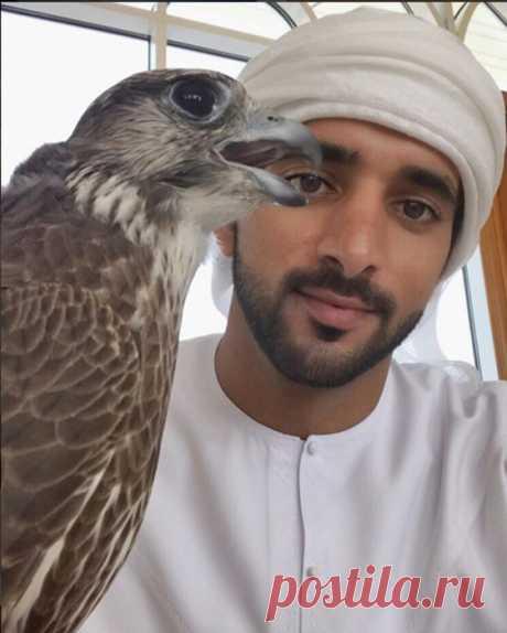 Красиво жить не запретишь: сказочная жизнь наследного принца Дубая