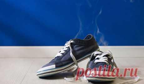 Как избавить обувь от неприятного запаха Летом проблема грязной обуви становится максимально актуальной. Пара пробежек — и любимые кроссовки превращаются в настоящий рассадник неприятных запахов, кому такое понравится. К счастью, есть …