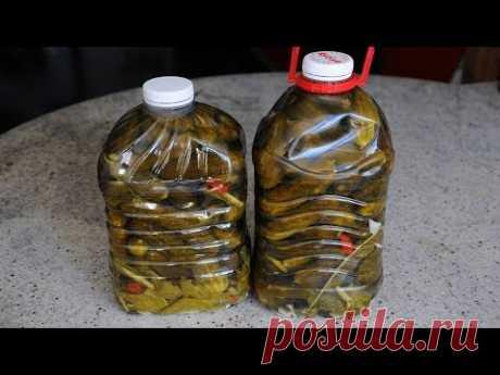 Los pepinos en la Botella De plástico. La salida №272 - YouTube