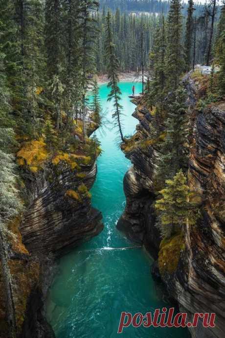 ღАльберта, Канада