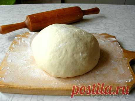 Тесто для пиццы по рецепту Джейми Оливера Это самое вкусное тесто для пиццы, которое я когда-либо пробовала. Готовится оно на раз-два, очень быстро, получается эластичным, а работать с таким тестом одно удовольствие! Пицца из такого теста пол...