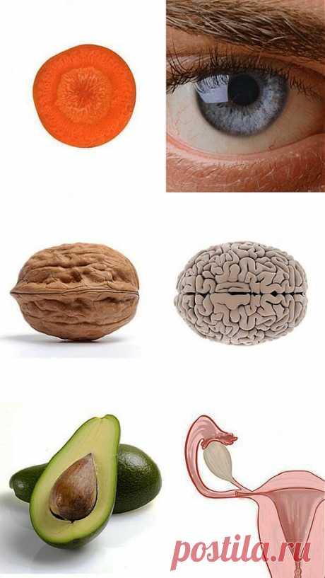 Еда полезна для той части тела, на которую похожа.