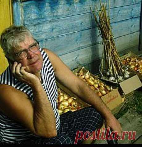 Посадил одну луковицу - выкопал ДЕСЯТЬ!!!