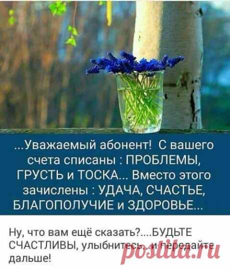 37585943_198837397639908_1736509256921776128_n.jpg (480×562)