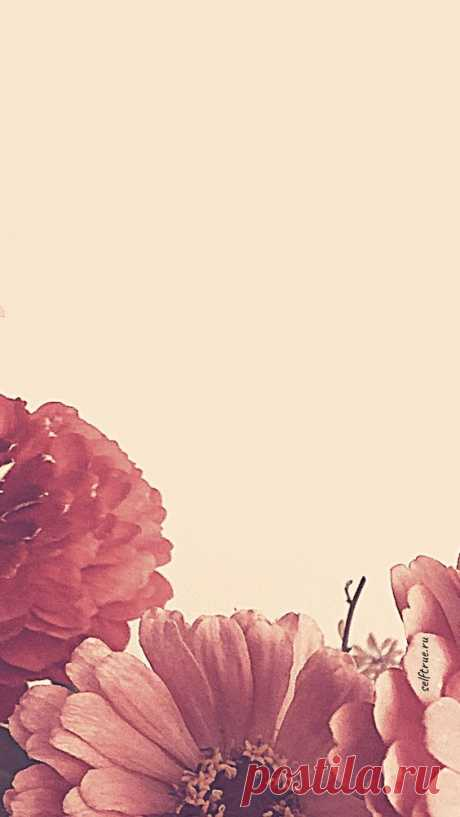 Фон для текста в Инстаграм | Розовый Stories Background. Фоны для текста в Инстаграм. Розовый фон. Идеи, как оформить тексты и сторис Инстаграм. Красивый пастельно-розовый фон для сториз с цветами…