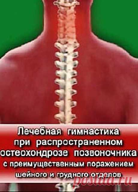 Главной задачей, представленного в данной программе комплекса лечебной физкультуры, являются как профилактика и предупреждение распространенного остеохондроза позвоночника, так и его лечение. В программе представлен рекомендованный комплекс упражнений при шейном и грудном остеохондрозе. Ежедневное выполнение данного комплекса способствует восстановлению нормального объема движений в позвоночнике, восстановлению нарушенной осанки, нормализации мышечного тонуса, улучшению кровоснабжения в ...