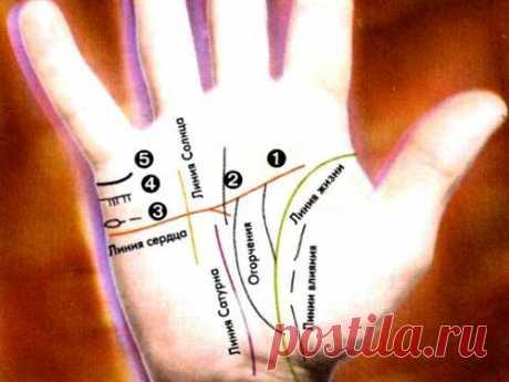 Линии на руке в хиромантии: узнаем все о личной жизни человека | Красота внутри вас | Яндекс Дзен