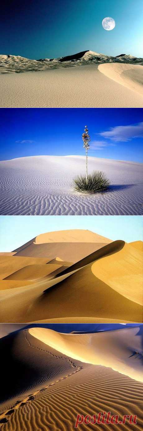Красота пустынь